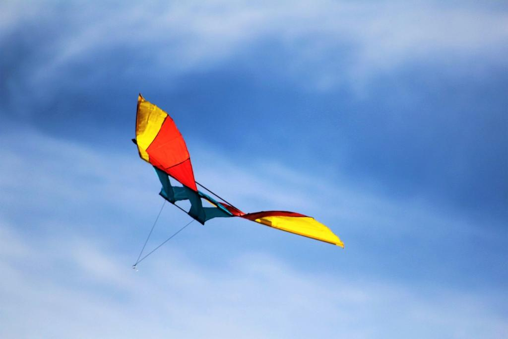Kite Flying, Bermuda